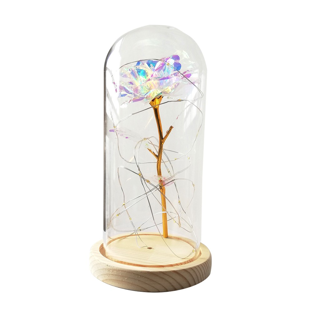 Birthday Gift Beautiful Preserved Rose Flower LED Light with Glass Cover Wooden Base Valentines Day Wedding Gift