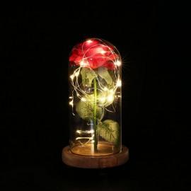 LED Rose Flower String Fairy Light Bottle Night Lamp Romantic Wedding Decor Glass Cover Wood Base for Christmas Birthday Gift