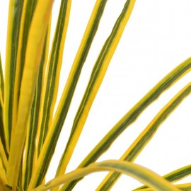 Artificial plant Dracaena with pot yellow 125 cm